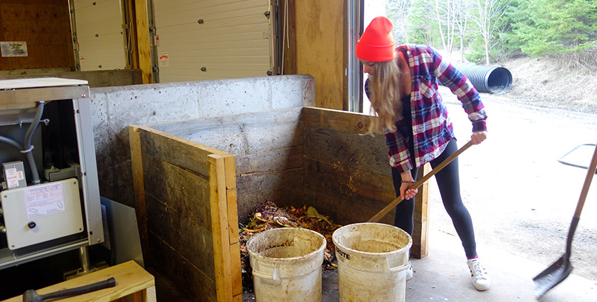 Sustainability and Compost